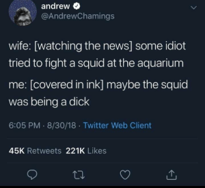 News, Twitter, and Aquarium: andrew  @AndrewChamings  wife: [watching the news] some idiot  tried to fight a squid at the aquarium  me: [covered in ink] maybe the squid  was being a dick  6:05 PM 8/30/18 Twitter Web Client  45K Retweets 221K Likes Squids