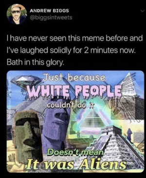 Mean It: ANDREW BIGGS  @biggsintweets  Thave never seen this meme before and  I've laughed solidly for 2 minutes now.  Bath in this glory.  Just because  WHITE PEOPLE  couldn't do it  Doesn't méan  It was Aliens