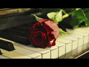 Andrew Cole - Dead Roses (Piano Part) I shared the full song not long ago but also really love this piano part. Its so calming!Check out my YouTube for more stuff like this :)https://www.youtube.com/channel/UCagXJJXBsqthg8nVQrTtkVw: Andrew Cole - Dead Roses (Piano Part) I shared the full song not long ago but also really love this piano part. Its so calming!Check out my YouTube for more stuff like this :)https://www.youtube.com/channel/UCagXJJXBsqthg8nVQrTtkVw