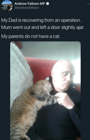 Cats, Dad, and Parents: Andrew Falloon MP  @andrewfalloon  My Dad is recovering from an operation.  Mum went out and left a door slightly ajar.  My parents do not have a cat. More proof cats arent assholes.