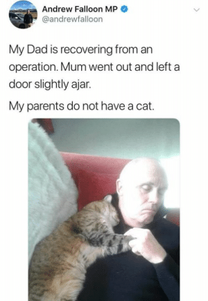 Dad, Memes, and Parents: Andrew Falloon MP  @andrewfalloon  My Dad is recovering from an  operation. Mum went out and left a  door slightly ajar.  My parents do not have a cat.