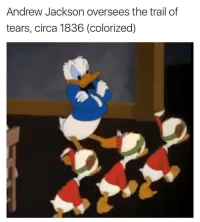 "<p>Whoever said the Donald Duck meme has limited potential is shortsighted. Buy now. via /r/MemeEconomy <a href=""http://ift.tt/2sJgqD1"">http://ift.tt/2sJgqD1</a></p>: Andrew Jackson oversees the trail of  tears, circa 1836 (colorized) <p>Whoever said the Donald Duck meme has limited potential is shortsighted. Buy now. via /r/MemeEconomy <a href=""http://ift.tt/2sJgqD1"">http://ift.tt/2sJgqD1</a></p>"