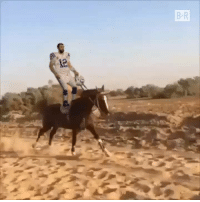 Andrew Luck, Indianapolis Colts, and Luck: Andrew Luck and the Colts ride into the playoffs!