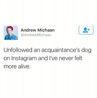What a rush: Andrew Michaarn  @AndrewMichaan  Unfollowed an acquaintance's dog  on Instagram and I've never felt  more alive What a rush