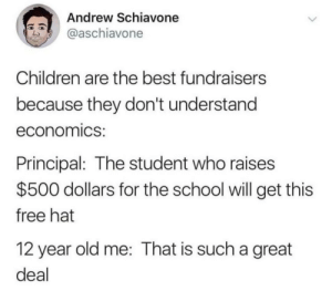 Children, Dank, and Memes: Andrew Schiavone  @aschiavone  Children are the best fundraisers  because they don't understand  economics:  Principal: The student who raises  $500 dollars for the school will get this  free hat  12 year old me: That is such a great  deal me irl by _itsgomesz MORE MEMES