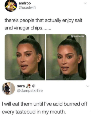 Dank, Memes, and Target: androo  @usedwifi  there's people that actually enjoy salt  and vinegar chips..  @memezar  sara  @dumpstxrfire  I will eat them until l've acid burned off  every tastebud in my mouth. Thats how I roll. by CharlieBronsonsGhost MORE MEMES