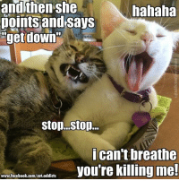"Facebook, Memes, and facebook.com: andthen she  noints and says  ""get down  hahaha  ican't breathe  you're killing me!  www.facebook.com/cat.addicts :P"