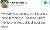 Funny, Life, and Lol: Andy Richter  @AndyRichter  My body is a temple, but it's one of  those temples in Thailand where  they let monkeys shit all over the  place Another day in the life. Each and every single one of these photos will awaken the truth in all of us. A truth we may have already known, but still true nonetheless. #thestruggle #thestruggleisreal #truth #sadbuttrue #funny #memes #tweets #funnymemes #funnytweets #lol #haha