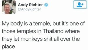 me irl by Billahhh MORE MEMES: Andy Richter  @AndyRichter  My body is a temple, but it's one of  those temples in Thailand where  they let monkeys shit all over the  place me irl by Billahhh MORE MEMES
