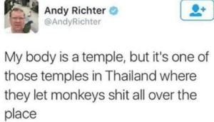 Temple: Andy Richter  @AndyRichter  My body is a temple, but it's one of  those temples in Thailand where  they let monkeys shit all over the  place