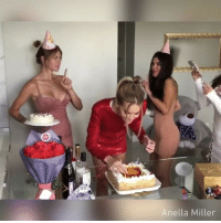 Be a good sport on your birthday. - 🎥 @anella_miller - birthday cake 9gag: Anella Miller Be a good sport on your birthday. - 🎥 @anella_miller - birthday cake 9gag