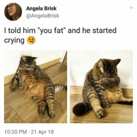 """Crying, Dank, and Cool: Angela Brisk  @AngelaBrisk  I told him """"you fat"""" and he started  crying  10:20 PM 21 Apr 18 Not cool"""