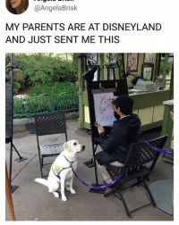 Disneyland, Memes, and Parents: @AngelaBrisk  MY PARENTS ARE AT DISNEYLAND  AND JUST SENT ME THIS Borkasso