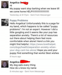"Being Alone, Animals, and Comfortable: Angelica S  Hi  My puppy want stop barking when we leave til  Yesterday at 9:17pm Sent from Messenger  Puppy Problems  Hello Angelica! Unfortunately this is a page for  my band, which happens to be called ""puppy  problems"". I'm not an expert. However I did a  little googling and it seems like your pup has  separation anxiety. There's a lot of resources  out there about helping them feel more  comfortable when alone! Here's a link you  might find helpful. https://www.lovethatpet.  com/dogs/health/separation-anxiety-when-  your-dog-cant-be-alone/ Hope you and your  puppy find something that works! Best wishes  9 hours ago  Angelica  My dog eats every thing  How do u know my name  8 minutes ago Sent from Messenger Follow my other account @x__social_butterfly_x if you love animals!! 😹🐶❤"