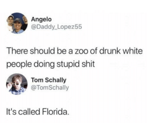Drunk, Shit, and White People: Angelo  @Daddy_ Lopez55  There should be a zoo of drunk white  people doing stupid shit  Tom Schally  @TomSchally  It's called Florida. Florida in a nutshell