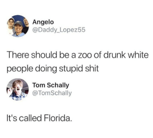 Drunk, Shit, and True: Angelo  @Daddy_ Lopez55  There should be a zoo of drunk white  people doing stupid shit  Tom Schally  TomSchall  It's called Florida. True
