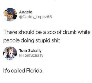 Or a f**kin Scotland: Angelo  @Daddy Lopez55  There should be a zoo of drunk white  people doing stupid shit  Tom Schally  @TomSchally  It's called Florida Or a f**kin Scotland