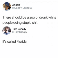Drunk, Memes, and Shit: Angelo  @Daddy_Lopez55  There should be a zoo of drunk white  people doing stupid shit  Tom Schally  @TomSchally  It's called Florida. 😂 gm