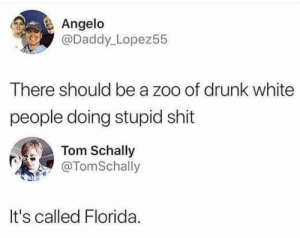 Oh hail Florida: Angelo  @Daddy_Lopez55  There should be a zoo of drunk white  people doing stupid shit  Tom Schally  @TomSchally  It's called Florida. Oh hail Florida
