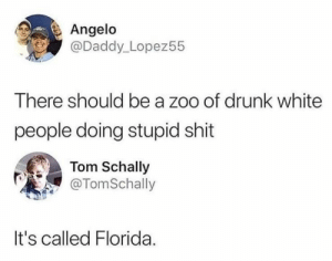 GOT 'EM. #Entertainment #Twitter #Insults #Comebacks #Burn #Roast: Angelo  @Daddy_Lopez55  There should be a zoo of drunk white  people doing stupid shit  Tom Schally  @TomSchally  It's called Florida GOT 'EM. #Entertainment #Twitter #Insults #Comebacks #Burn #Roast
