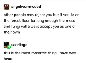 Fungi love you: angelwormwood  other people may reject you but if you lie on  the forest floor for long enough the moss  and fungi will always accept you as one of  their own  sacrilcge  this is the most romantic thing I have ever  heard Fungi love you