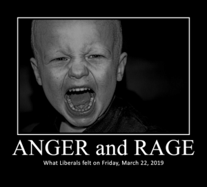 Anger and Rage: ANGER and RAGE  What Liberals felt on Friday, March 22, 2019 Anger and Rage