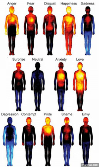 Dank, 🤖, and Shame: Anger  Fear  Disgust  Happiness Sadness  Surprise  Neutral  Anxiety  Love  Depression Contempt  Pride  Shame  Envy  A9GAG.COM Sensations in different parts of our body when we experience emotions. http://9gag.com/gag/aGxo84n?ref=fbp