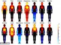 Dank, 🤖, and Shame: Anger  Fear  Disgust Happiness Sadness  Surprise  Neutral  Anxiety  Love  Depression Contempt  Pride  Shame  Envy  VIA 9GAG.COM  10  15 Mapping of emotions :)