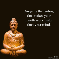 Be still... It will pass...: Anger is the feeling  that makes your  mouth work faster  than your mind  Living the  LAW of ATTRACTION Be still... It will pass...