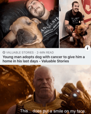 Valuable Stories by SubToBrianMemeCity MORE MEMES: ANGHEST  NORTH ES  VALUABLE STORIES 2-MIN READ  Young man adopts dog with cancer to give him a  home in his last days - Valuable Stories  This... does put a smile on my face.  ENGLAND Valuable Stories by SubToBrianMemeCity MORE MEMES