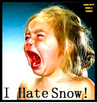 Memes, youtube.com, and Snow: ANGRY NITTY  NEEDS A  I Hate Snow! https://www.youtube.com/watch?v=uj72jRFfV6w