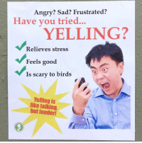 frustrated: Angry? Sad? Frustrated?  Have vou tried...  YELLING?  Relieves stress  Feels good  Is scary to birds  Yelling is  like talking,  but louder!
