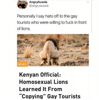 """Love, Memes, and News: AngryAussie  @angryaussie  Personally I say hats off to the gay  tourists who were willing to fuck in front  of lions.  NEWS  Kenyan Official:  Homosexual Lions  Learned It From  """"Copying"""" Gay Tourists Follow @lolpickupliness if you love to laugh, you won't regret it!🙌🏻😂"""