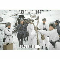 ww2 angrybirds: ANGRYBIRDS  1941EDITION ww2 angrybirds