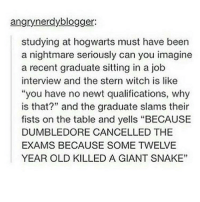 """HAHA: angrynerdyblogger:  studying at hogwarts must have been  a nightmare seriously can you imagine  a recent graduate sitting in a job  interview and the stern witch is like  """"you have no newt qualifications, why  is that?"""" and the graduate slams their  fists on the table and yells """"BECAUSE  DUMBLEDORE CANCELLED THE  EXAMS BECAUSE SOME TWELVE  YEAR OLD KILLED A GIANT SNAKE"""" HAHA"""