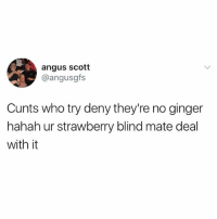 If you don't follow @awfulbanter you're missing out on comedy gold 😂😂: angus scott  @angusgfs  Cunts who try deny they're no ginger  hahah ur strawberry blind mate deal  with it If you don't follow @awfulbanter you're missing out on comedy gold 😂😂