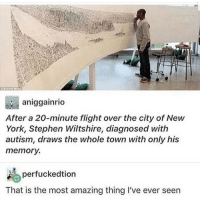 Memes, New York, and Stephen: aniggainrio  After a 20-minute flight over the city of New  York, Stephen Wiltshire, diagnosed with  autism, draws the whole town with only his  memorv  perfuckedtion  That is the most amazing thing I've ever seen @donny.drama Is the best account you're not following 👌