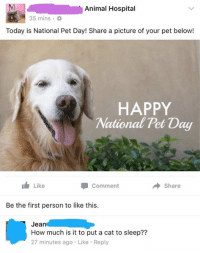 Animal Hospital  35 mins.  Today is National Pet Day! Share a picture of your pet below!  HAPPY  National Pet Day  Like  comment  Share  Be the first person to like this.  Jean  How much is it to put a cat to sleep??  27 minutes ago Like Reply Happy National Pet Day from Jean!