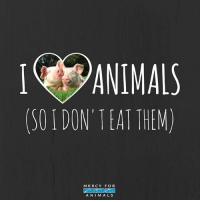 Animals, Memes, and Mercy: ANIMALS  (50 DON TEAT THEM)  MERCY FOR  A NIM ALS It's this simple. 💯 govegan vegansofig mercyforanimals loveanimals pigsofinstagram animallovers