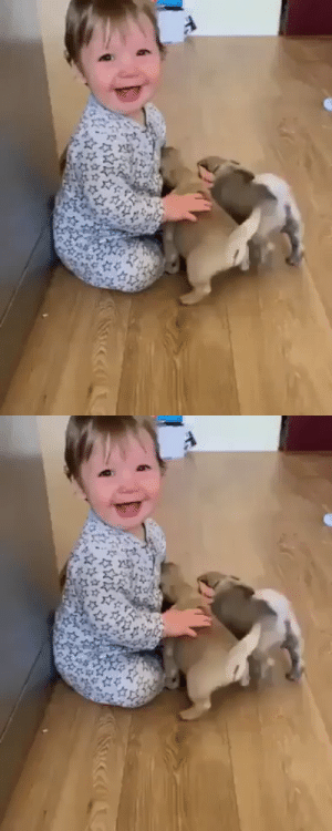 animalsnaps:  Kid enjoying with the puppies (via): animalsnaps:  Kid enjoying with the puppies (via)
