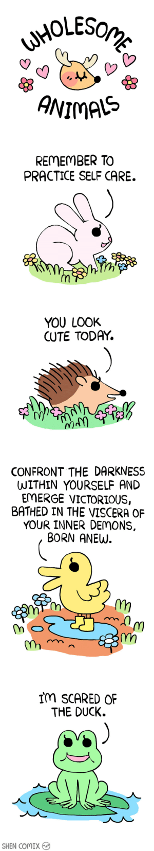 Cute, Duck, and Today: ANIMAS   REMEMBER TO  PRACTICE SELF CARE.   YOU LOOK  CUTE TODAY.  N)   CONFRONT THE DARKNESS  WITHIN YOURSELF AND  EMERGE VICTORIOUS,  BATHED IN THE VISCERA OF  YOUR INNER DEMONS.  BORN ANEW  Tm   Im SCARED OF  THE DUCK.  SHEN COMIX