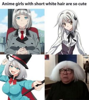 so cute!: Anime girls with short white hair are so cute so cute!