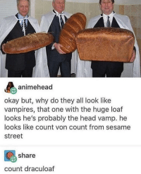 Head, Sesame Street, and Okay: animehead  okay but, why do they all look like  vampires, that one with the huge loaf  looks he's probably the head vamp. he  looks like count von count from sesame  street  share  count draculoaf Vampires