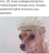 Aesthetic, Europe, and Once: Ann, 25, loves underground techno.  Visited Eastern Europe once. Smokes  parliament lights and loves your  aesthetic.