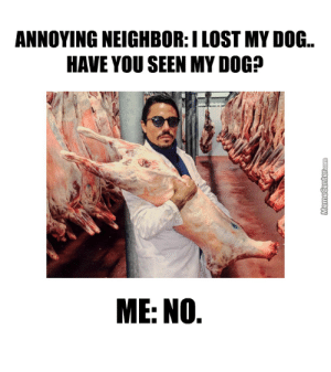 Salt.. Hey.. by akapabs - Meme Center: ANNOYING NEIGHBOR:I LOST MY DOG.  HAVE YOU SEEN MY DOG?  ME: NO Salt.. Hey.. by akapabs - Meme Center