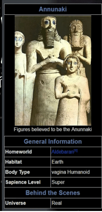 Annunaki Figures Believed to Be the Anunnaki General Information