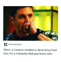Oh no: anointed cherub  When a Fandom newbie is describing their  love for a character that you know dies. Oh no