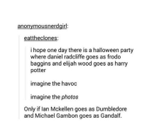 ~Dobby: anonymous nerdgirl  eattheclones:  i hope one day there is a halloween party  where daniel radcliffe goes as frodo  baggins and elijah wood goes as harry  potter  imagine the havoc  imagine the photos  Only if lan Mckellen goes as Dumbledore  and Michael Gambon goes as Gandalf ~Dobby