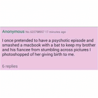 Memes, Anonymous, and Macbook: Anonymous No.622798957 17 minutes ago  I once pretended to have a psychotic episode and  smashed a macbook with a bat to keep my brother  and his fiancee from stumbling across pictures l  photoshopped of her giving birth to me.  6 replies This is very relatable!