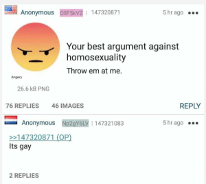 Anonymous, Best, and Images: Anonymous OllF5kvZ | 147320871  5 hr ago .  Your best argument against  homosexuality  Throw em at me.  Angery  26.6 kB PNG  76 REPLIES  46 IMAGES  REPLY  Anonymous Np2gY6LV 147321083  5 hr ago  >147320871 (OP)  Its gay  2 REPLIES meirl